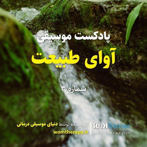 آلبوم Body & Soul Cleansing Podcast - Vol. 2 اثر WOMTherapy
